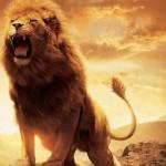 Defend your boundaries like a lion